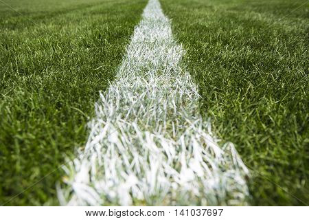 Close up white stripe on the green grass, soccer and football stadium