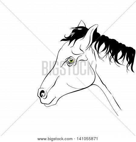 Horse head in profile. Elegant black and white silhouette horse with realistic green eyes.