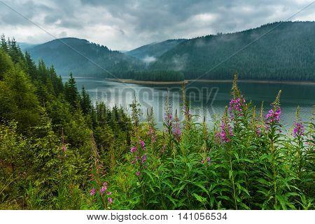 Lake Vidra In Romania