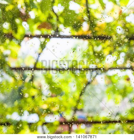 Raindrops On Window Glass Of Country House