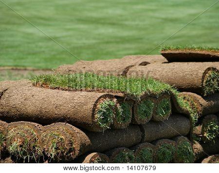 Rolls Of Sod On A Turf Farm