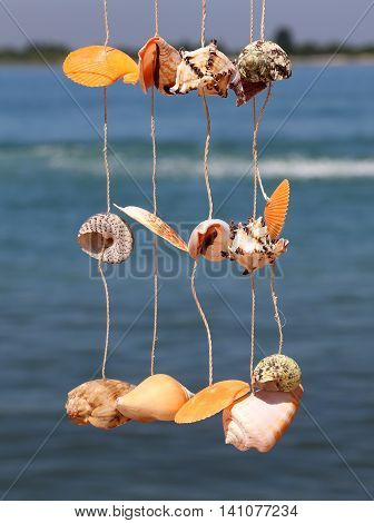 Shells Hanging From A Wire To Decorate The House