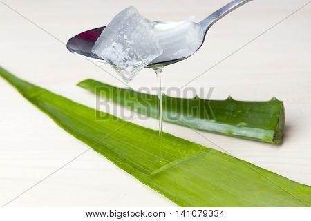 Aloe vera juice with fresh leaves, treatment