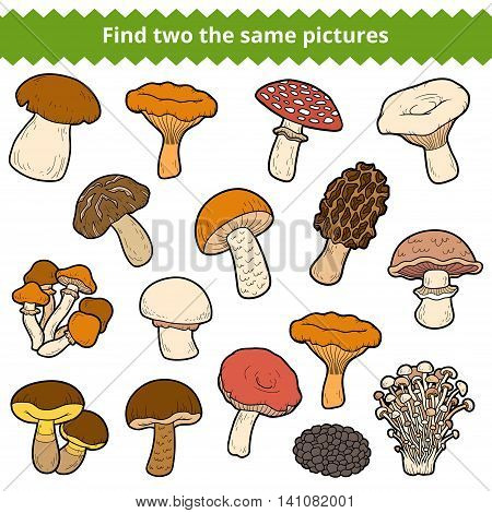 Find Two The Same Pictures, Set Of Mushrooms
