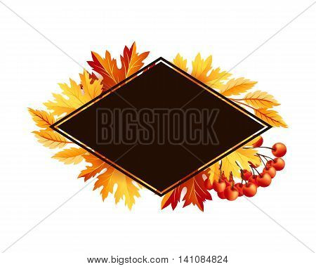 Autumn fall maple tree leaves with rowanberry card. Rhombus frame with copy space. Vector banner template.
