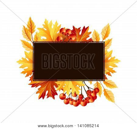 Autumn fall maple tree leaves with rowanberry card. Square frame with copy space. Vector banner template.