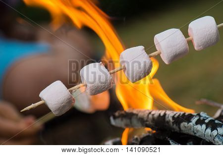 Close-up of marshmallows roasting in campfire in forest