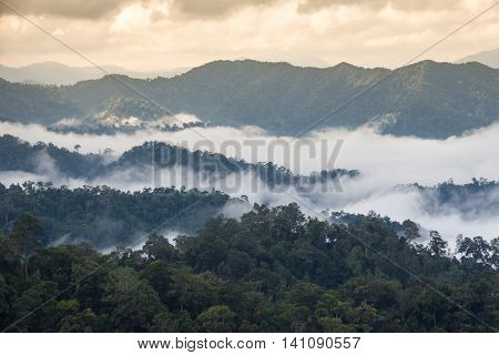 The landscape photo, beautiful sea fog at Kaeng Krachan National Park in Thailand