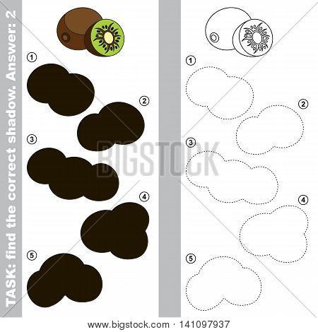 Kiwifruit with different shadows to find the correct one. Compare and connect object with it true shadow. Easy educational kid gaming. Simple level of difficulty. Visual game for children.
