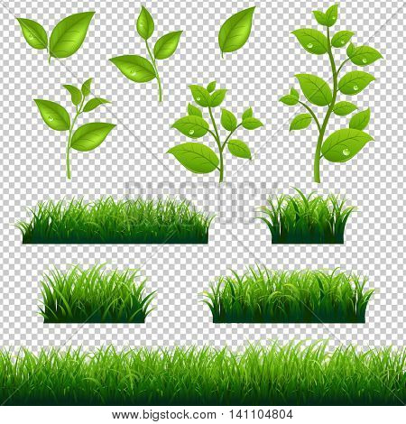 Green Grass And Leaves Big Set, With Gradient Mesh, Vector Illustration
