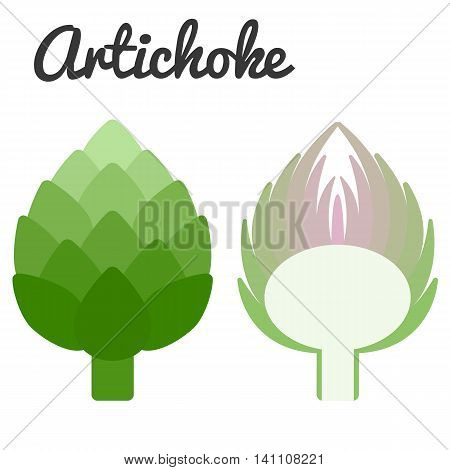 Vector cross section artichoke, flat design with text