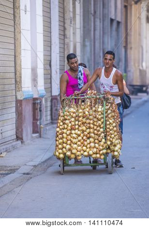 HAVANA CUBA - JULY 18 : A Cuban onions seller in old Havana street on July 18 2016. The historic center of Havana is UNESCO World Heritage Site since 1982.