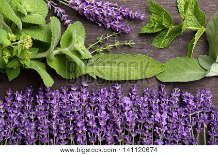 Lavender flowers and aromatic green herbs. Aromatherapy.