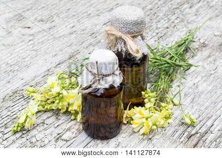 Linaria vulgaris (common toadflax yellow toadflax or butter-and-eggs) and pharmaceutical bottles on old wooden table. In herbal medicine is used in the form of tinctures and ointments