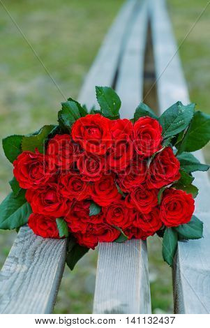 Red, fresh, beautiful roses are a gift for the wedding for newlyweds, roses lie on a wooden bench.