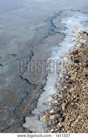 Dead Sea Minerals And Salt Shore Line