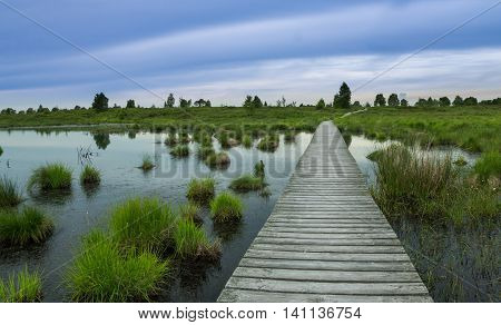 Wooden boardway leading over a swamp in a recreation area belgium.