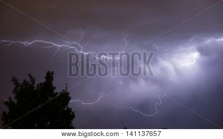 Electrical energy fills the skies in a spectacular display of nature's power