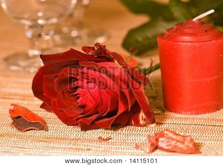 scarlet sweetheart rose and candle