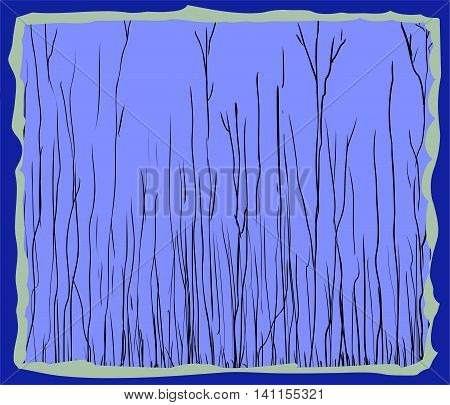 Blue Framed Illustration Of Tall Thin Trees