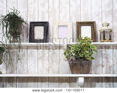 Picture frames and flowerpot on shelves over wooden grunge wall in living room. Vintage decorative style.