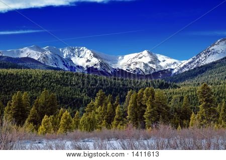 Winter Mountains And Forest In Colorado