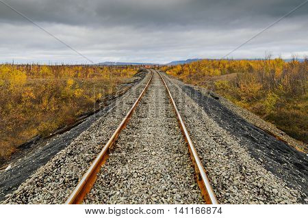 Railway Track. Late Autumn In The Arctic Tundra.