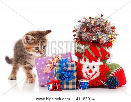 Cute kitten with New year garland and toys isolated on white background