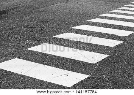Zebra. Pedestrian Crossing Road Marking