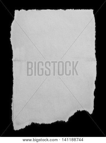 Piece of torn paper on black