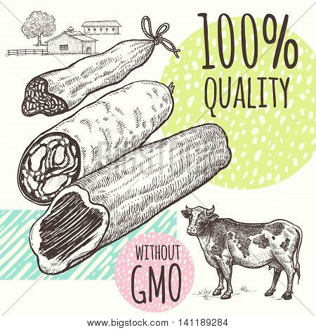 Poster with farm meat products and cow. Vector illustration in vintage style graphics. Hand drawing sketch. Sausage, ham, cattle. Designs for advertising healthier quality of farm products.
