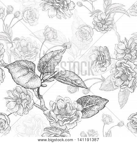 Black and white vector background with flower Chinese plum. Floral pattern with leaves, flowers and branches of the tree Chinese plum. Design paper, wallpaper and fabrics. National Chinese plant.