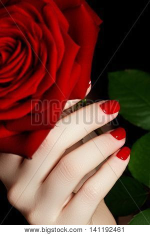 Beautiful Manicured Woman's Hands With Red Nail Polish. Beautifu