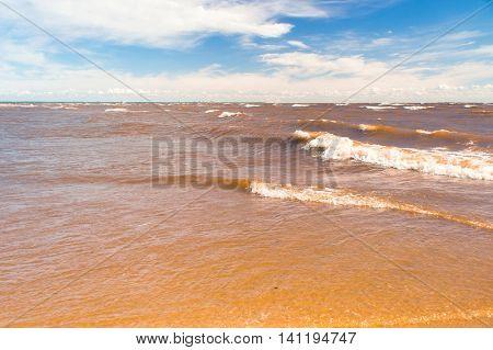 Windy Holiday Sunshine Surf