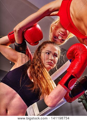 Two women boxer wearing red gloves to boxer in ring. Bottom view boxer women.