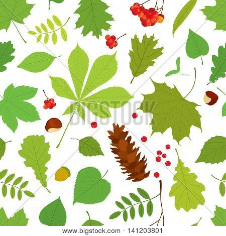 Seamless pattern of different tree leaves - oak, chestnut, birch, Rowan, linden, jasmine, lilac, maple, willow, poplar, sycamore, Rowan berry bunch, acorn, pine cone on white background.