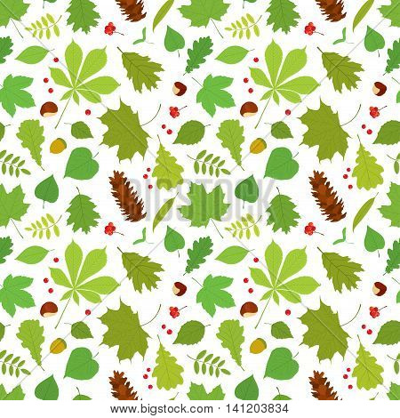 Seamless pattern of different tree leaves - oak, chestnut, birch, Rowan, linden, jasmine, lilac, maple, willow, poplar, sycamore, Rowan berries, acorns, pine cone, nuts on white background.