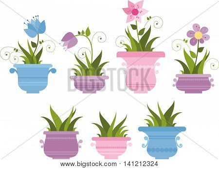 set of pot plants with flowers and leaves