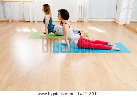 Two yogini practicing yoga and meditating in pose cobra, female yoga, health care and beautiful flexible body concept