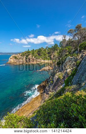 Rotary Park: the cliffs of tropical Eden in the sapphire coast, situated on the magnificent waters of Twofold Bay, is a coastal town in the South Coast region of New South Wales, Australia.