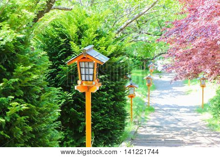 single Vintage wooden lamp post in nature.
