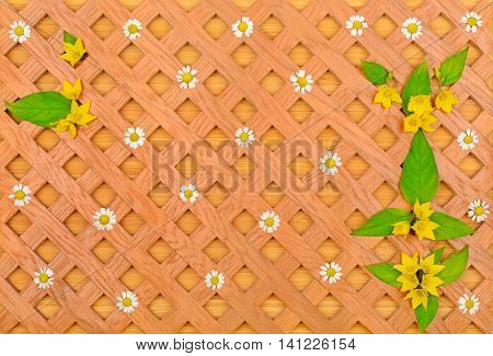 wood background decorative grille white daisies and pattern of wild flowers