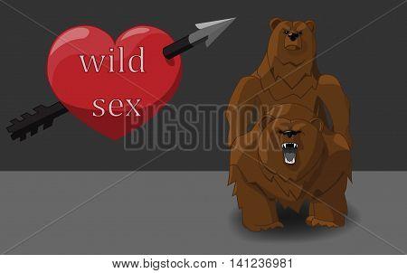 Wild Sex Bears