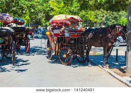 Corfu, Greece - July 7, 2011: Horse With Tourist Cab At City Center