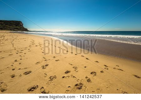 Garie Beach in a summer sunny day, Royal National Park coastline, New South Wales, Sydney, Australia.