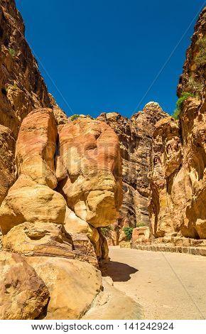 The Elephant Shaped Rock at Petra - Jordan