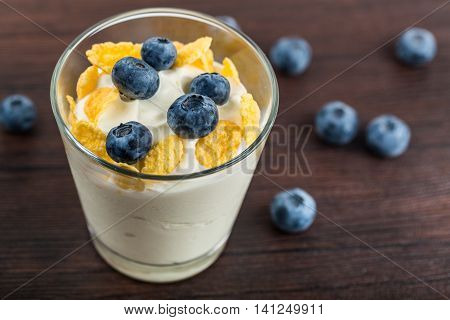 Natural Yogurt with Oats and Fresh Blueberries