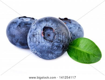 Blueberries with water droplets on white closeup