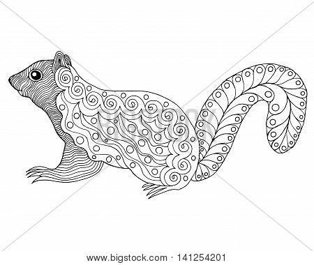 Cute squirrel. Black white hand drawn doodle animal. Ethnic patterned vector illustration. African indian totem tribal zentangle design. Sketch for coloring page tattoo poster print t-shirt