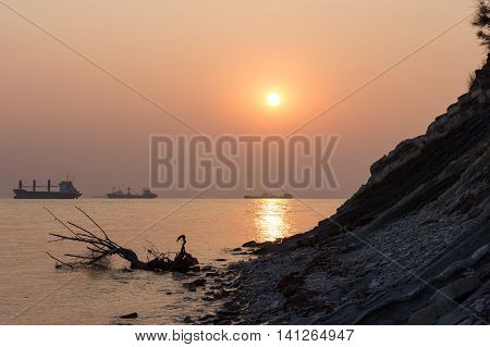 beach driftwood and ships against the setting sun
